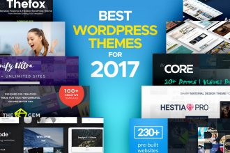 Take Your Pick of the Best 2017 WordPress Themes